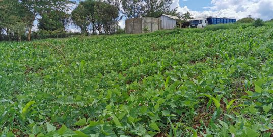 A PRIME VACANT RESIDENTIAL CUM AGRICULTURAL PARCEL WITHIN LAIRANGI RESIDENTIAL AREA, TIGANIA WEST SUB-COUNTY MERU COUNTY